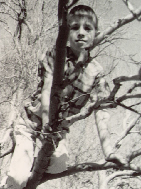 Donor 5 years old, climbing tree